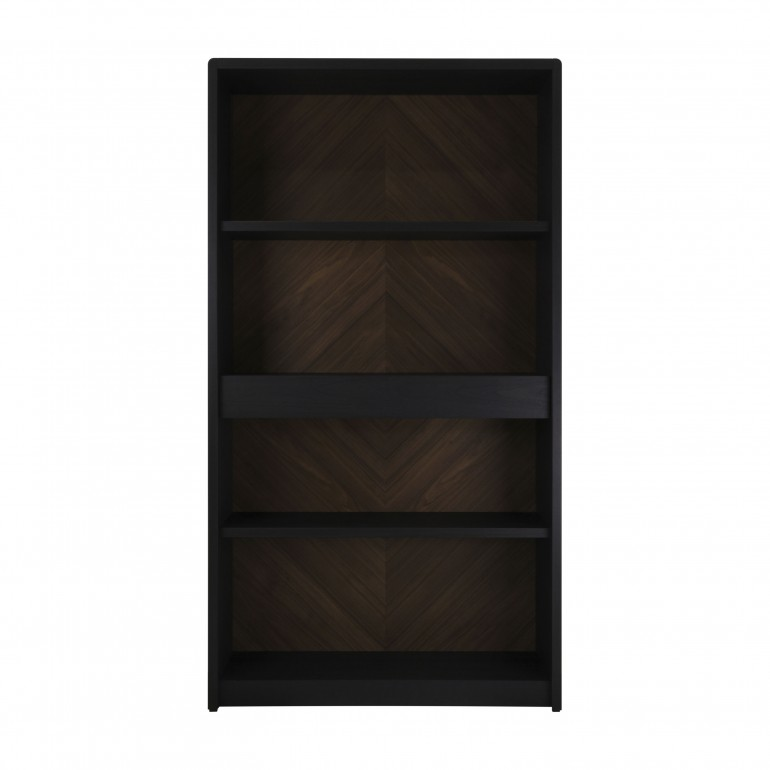 contemporary style bookcase with wood structure