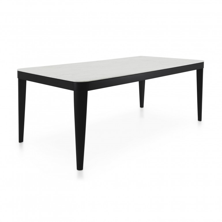 contemporary style table with wood structure
