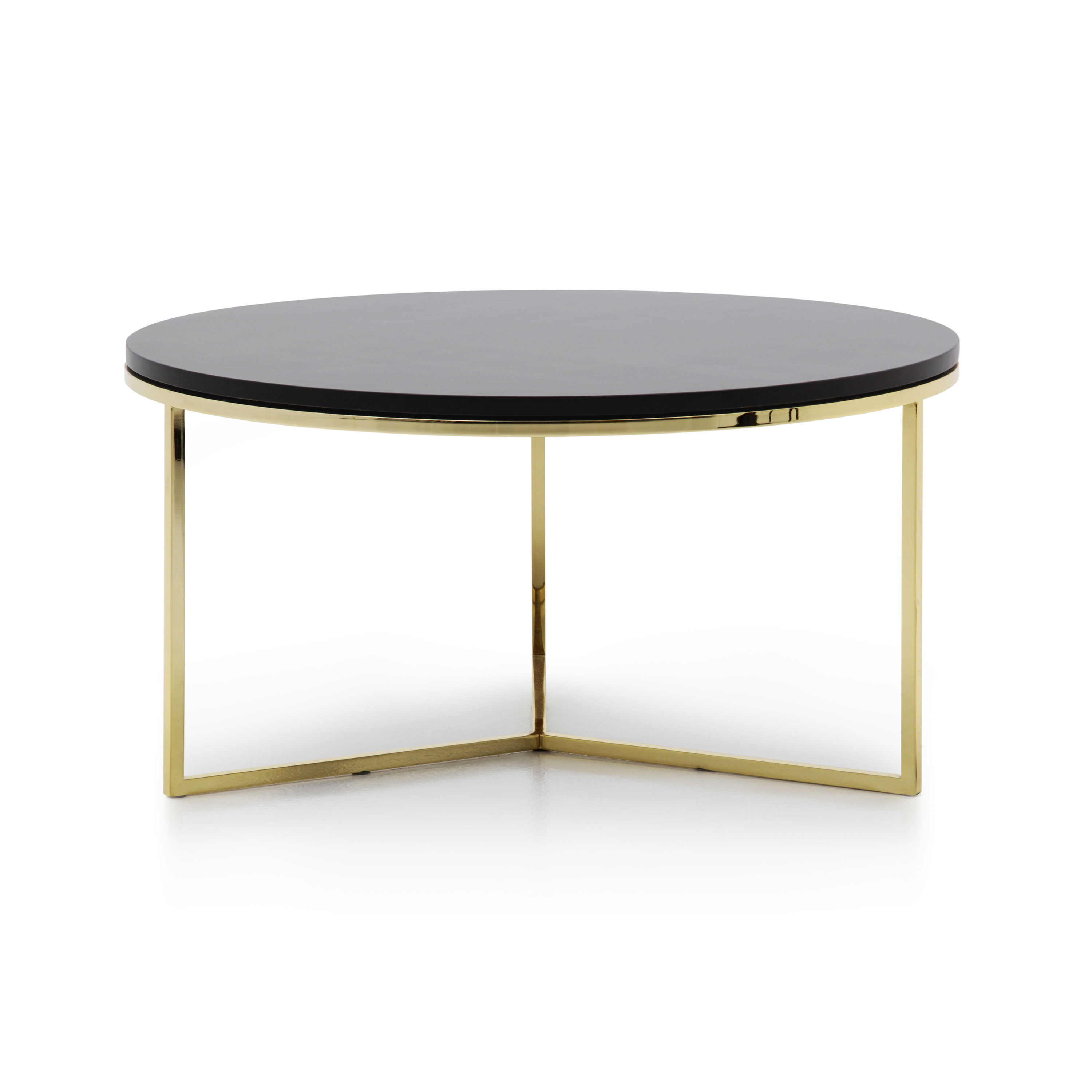 Modern Style Wooden Coffee Table